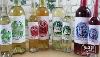 Liqueurs de fruits & plantes