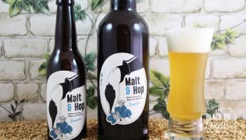 Malt & Hop - Blanche
