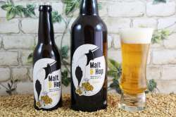 Malt & Hop - Blonde