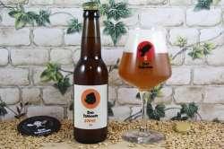 Baboon - Gorye