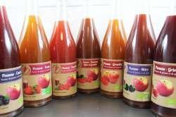 Nectar de pomme et fruits