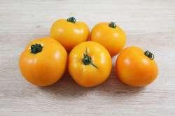 Tomates Jaune Rondes  Bio
