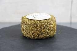 Fromage de chèvre - Herbes de Provence