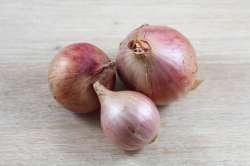 Oignons rosé Bio