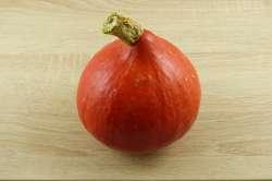 Potimarron Orange Bio